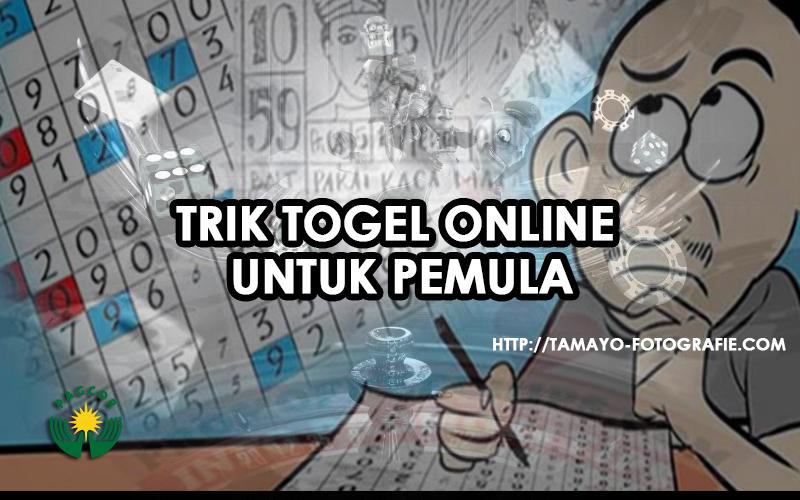 Trik Togel Online untuk Pemula